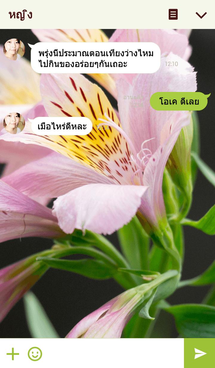 ธีมไลน์ Peruvian-Lily