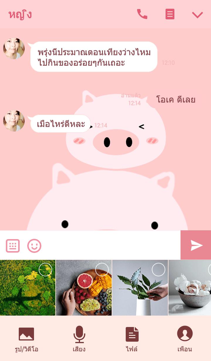 ธีมไลน์ Mumi Pig