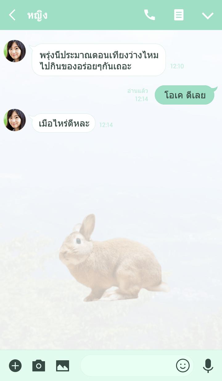 ธีมไลน์ Pitaro is rabbit
