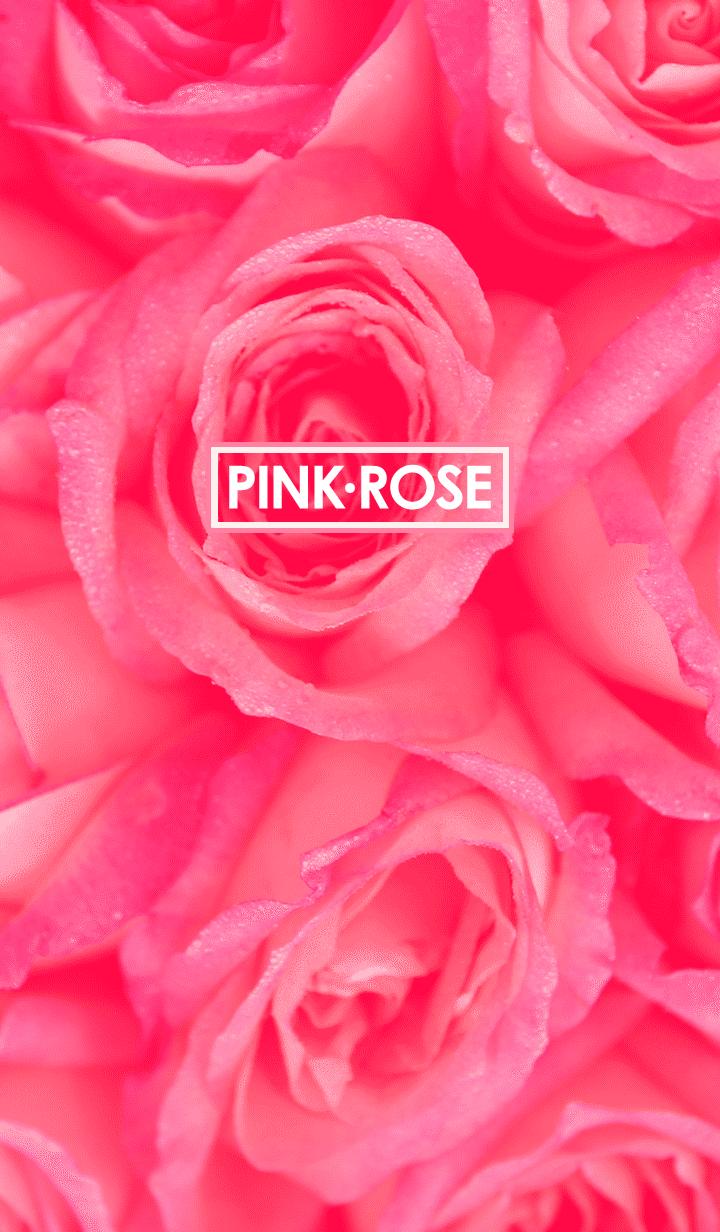 ธีมไลน์ Pink Rose with Love