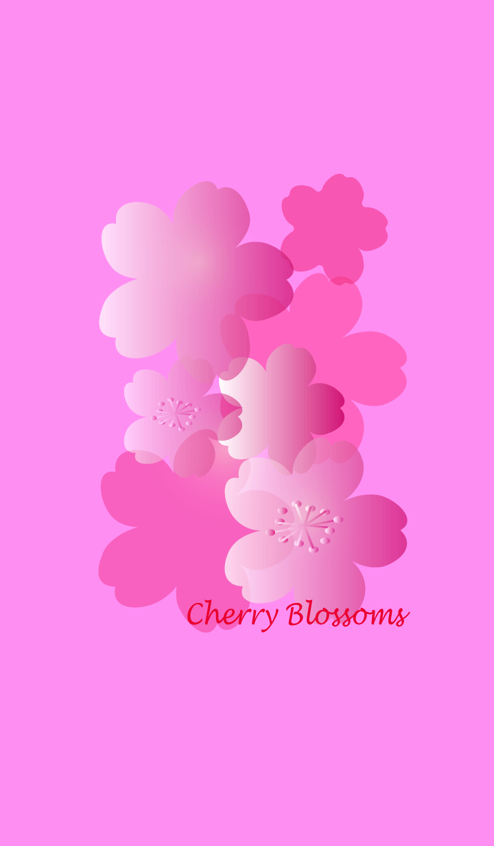 ธีมไลน์ Pretty cherry Blossoms