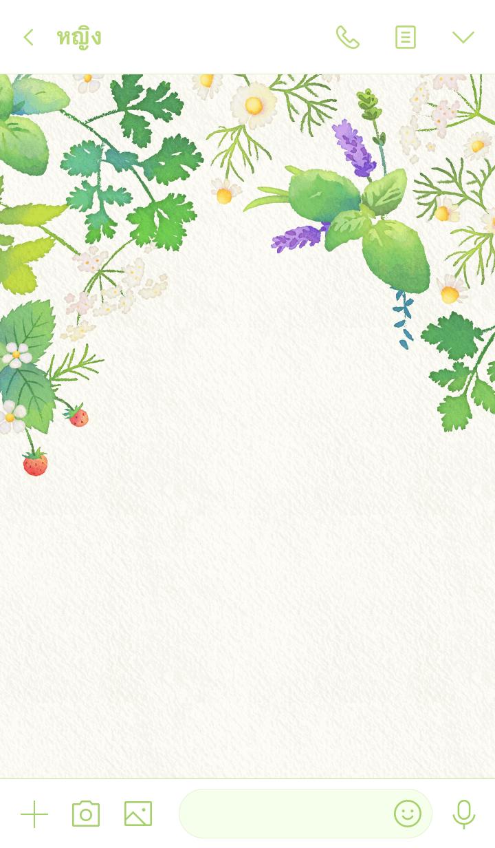 ธีมไลน์ Watercolor Herbs