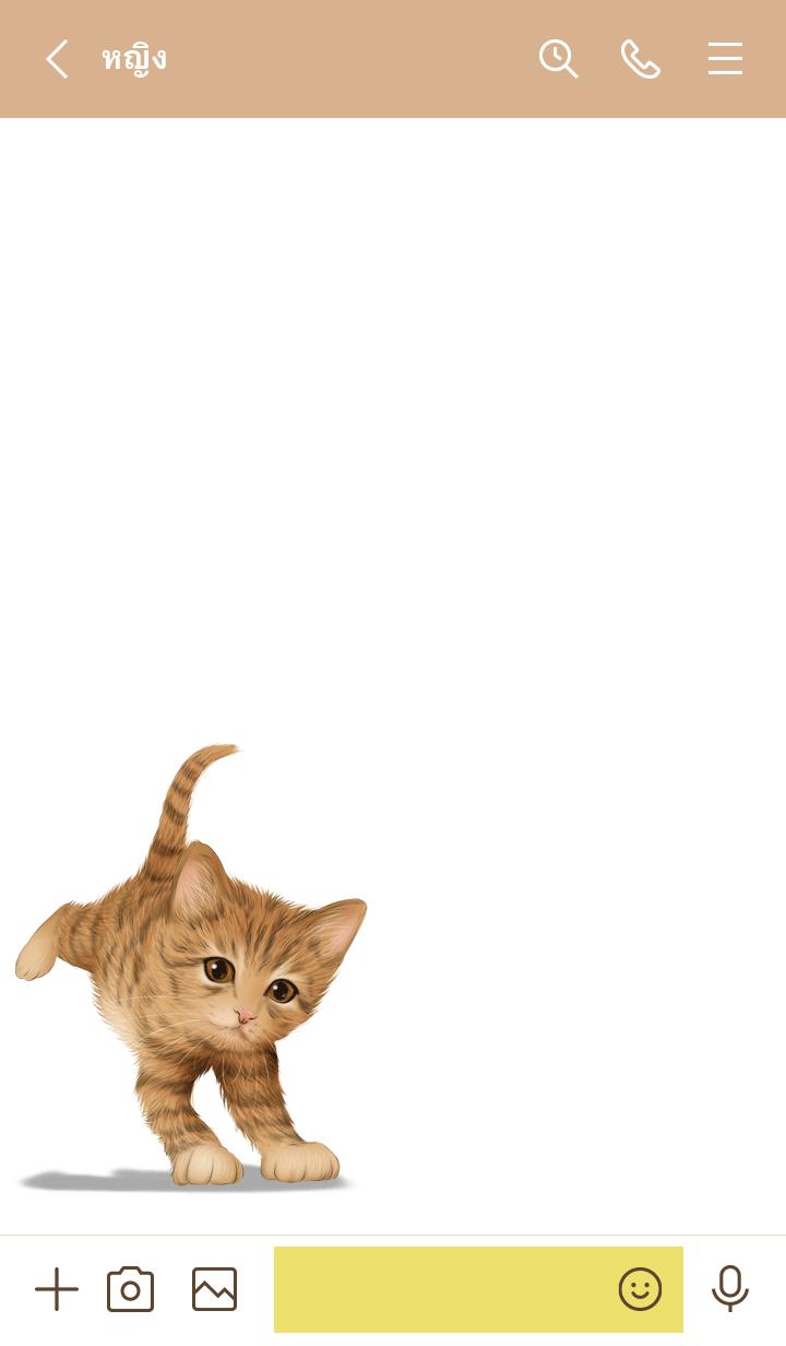 ธีมไลน์ Kaiji Cute Tiger cat kitten