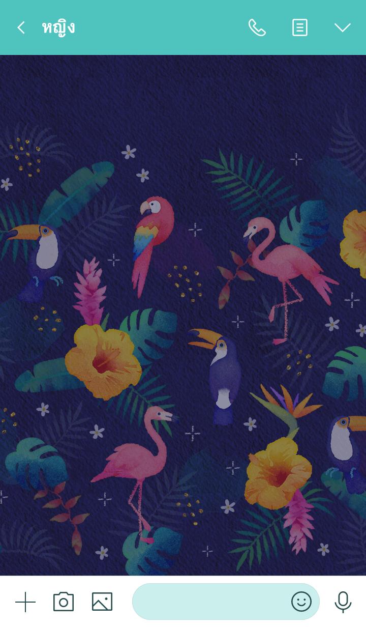 ธีมไลน์ Watercolor Tropical - NIGHT