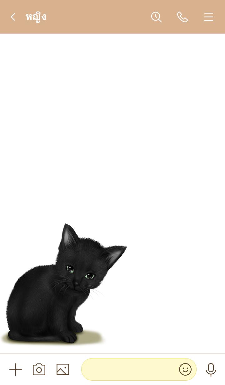 ธีมไลน์ Rinsei Cute black cat kitten