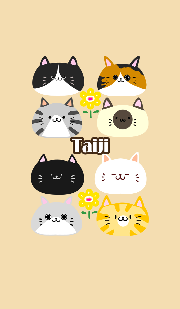 ธีมไลน์ Taiji Scandinavian cute cat2