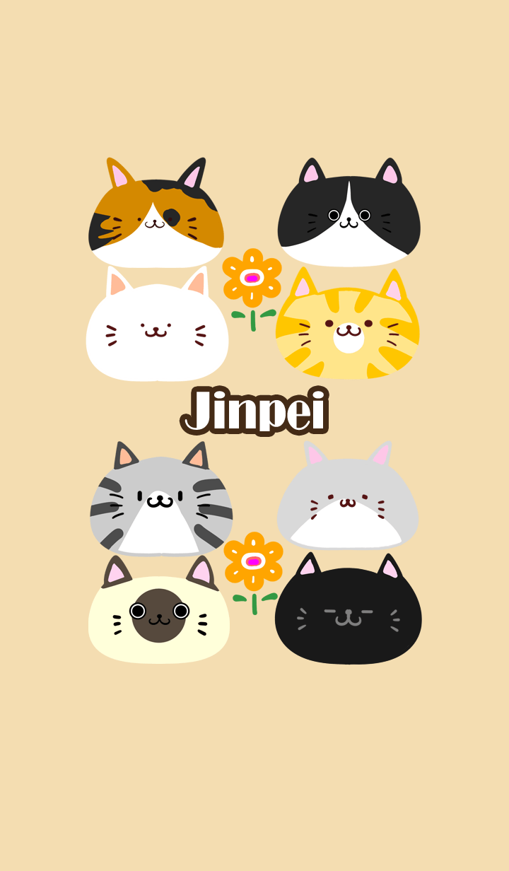 ธีมไลน์ Jinpei Scandinavian cute cat