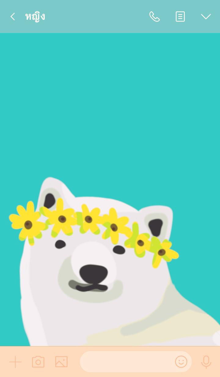 ธีมไลน์ Summer & bear