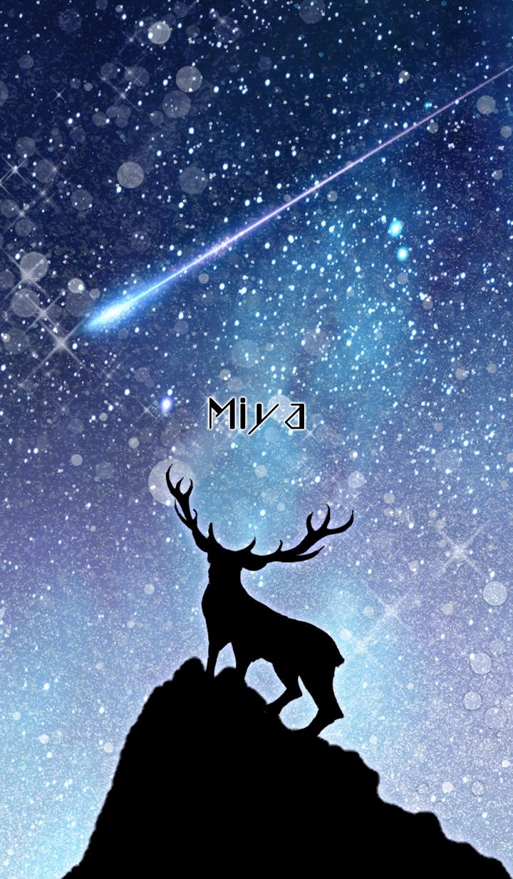 ธีมไลน์ Miya Reindeer and starry sky