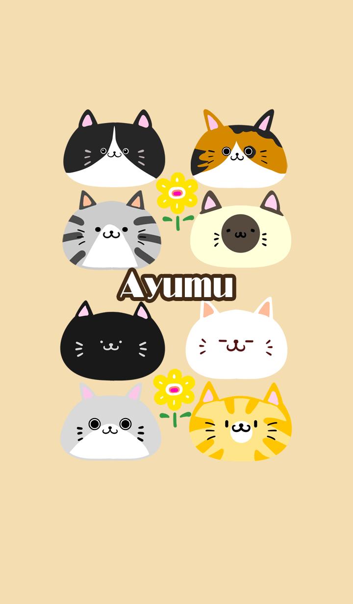 ธีมไลน์ Ayumu Scandinavian cute cat2