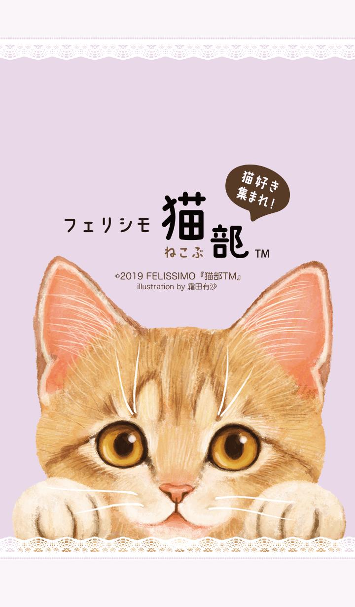 ธีมไลน์ FELISSIMO NEKOBU Shimoda Arisa
