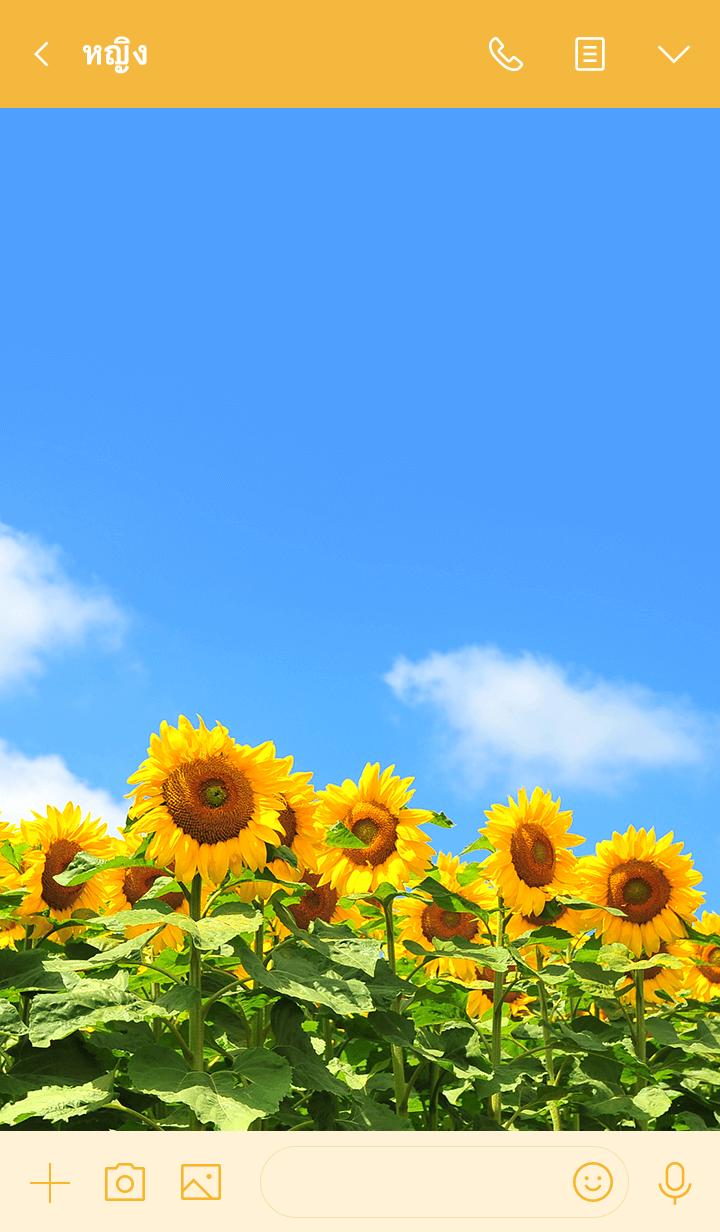 ธีมไลน์ Theme of Sun Flowers