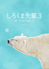 Mr. Polar Bear 3