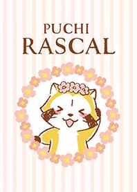 RASCAL☆FLOWER