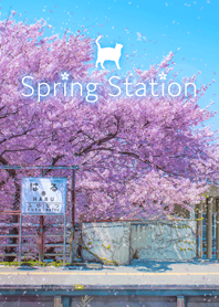 The Spring Station