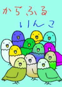 color parakeet