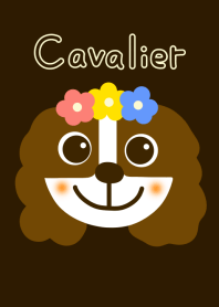 Cavalier dog and brown