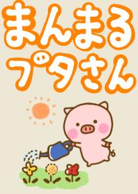 Pig perfect circle friendly