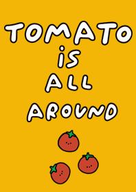 Tomato is all around