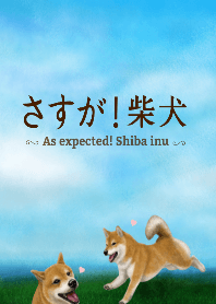 As expected! Shiba Inu