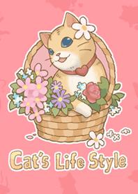 Cat's Life Style 貓咪日和 #2