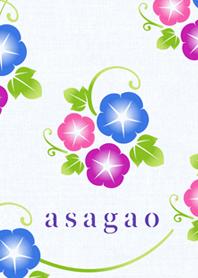 asagao(matsuri-yukata)