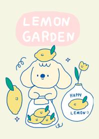 Lemon Garden :-)
