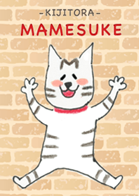 Browntabby cat Mamesuke