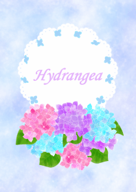 The day when hydrangea blooms
