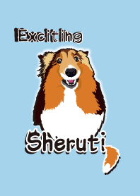 Exciting Sheltie