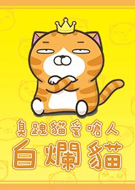 臭跩貓愛嗆人-白爛貓