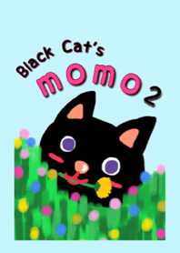 Black Cat's Momo 2