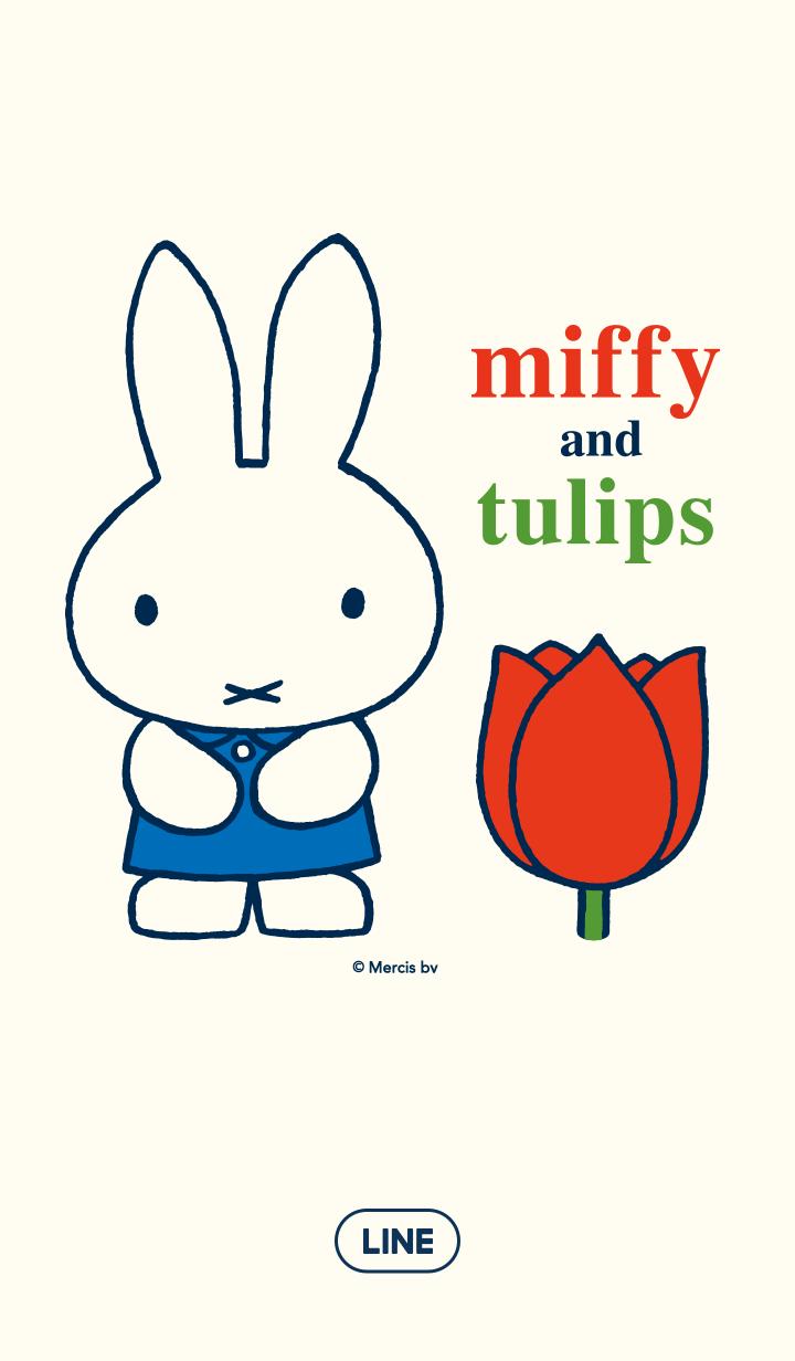 【主題】miffy&鬱金香