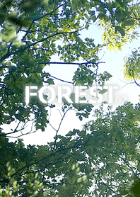 FOREST FOREST-02