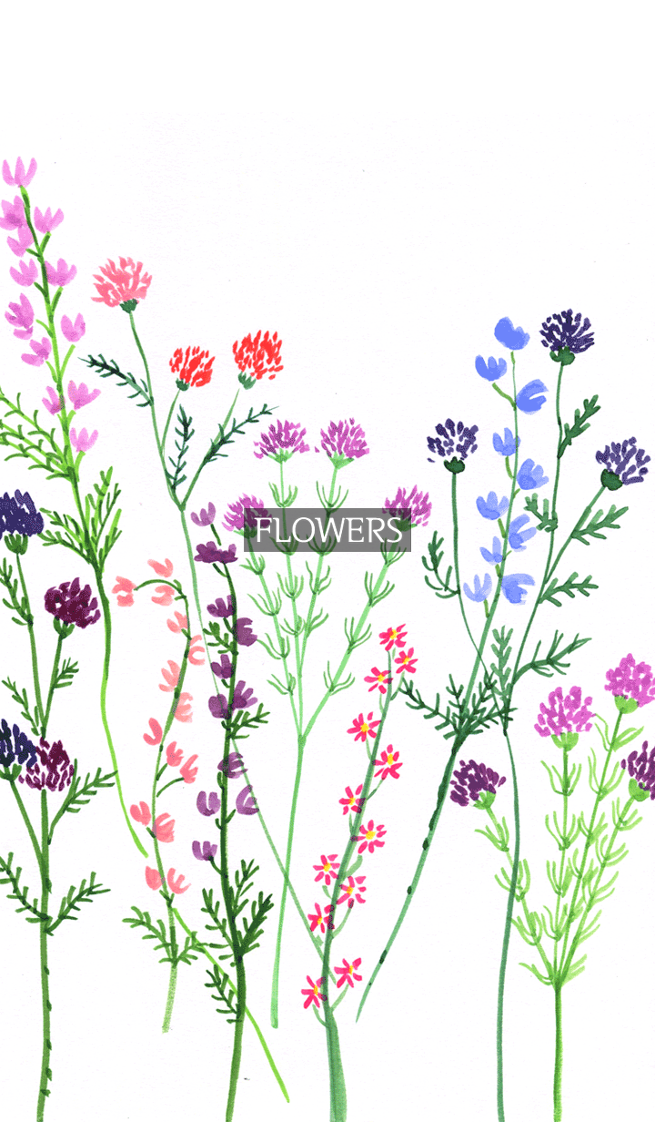 water color flowers_118