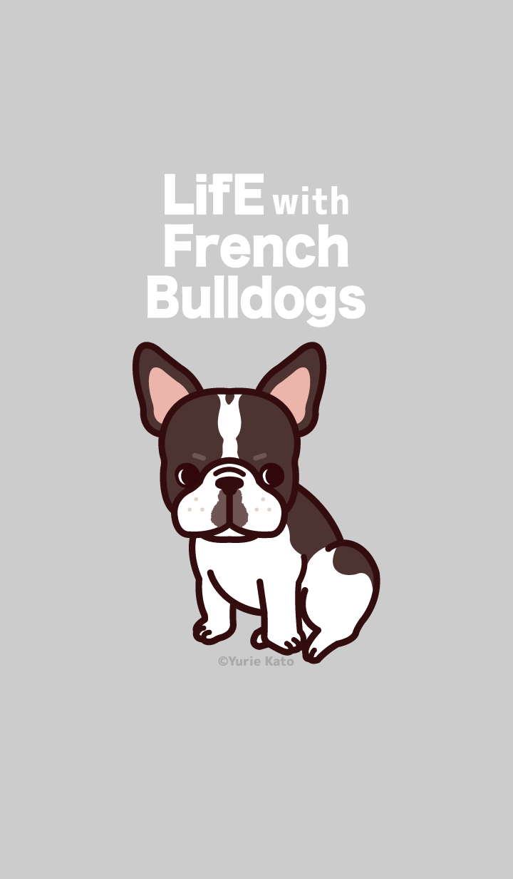 Life with French bulldogs