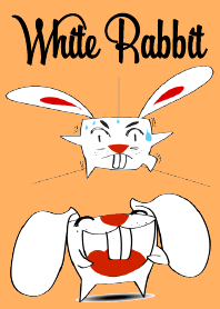 A Cute White Rabbit
